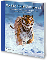 Steve Bloom: My Big Cat Journal
